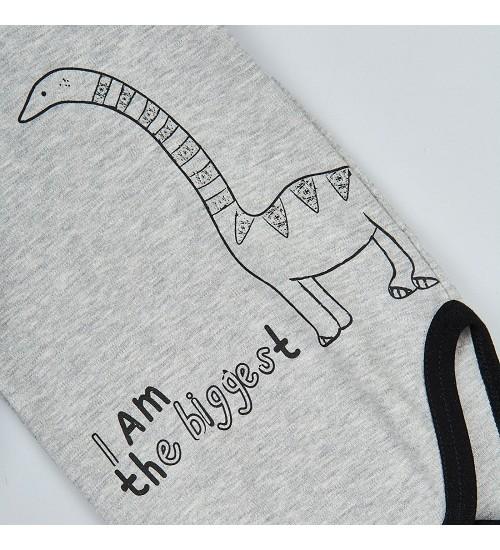 Garnamama bodžiukas ( Dino ). Spalva pilka